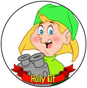 [Holly Elf]